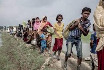 Why do leading global powers commit appalling silence on massacre and mass exodus of Rohingya community?, asks Mufti Anwar Ali