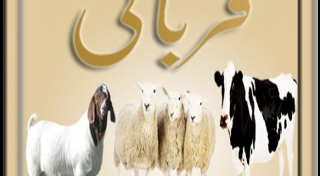 कुर्बानी अल्लाह के हुक्म पर बलिदान होने का जरिया ,मुफ्ती फजलुर्रहमान इलाहाबादी