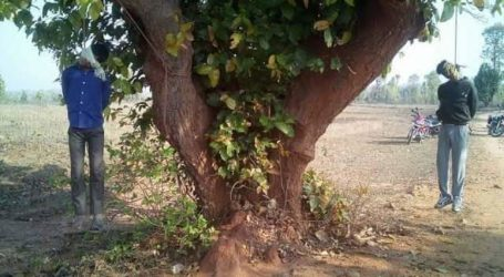 Latehar lynching case verdict a victory of legal fight: Popular Front