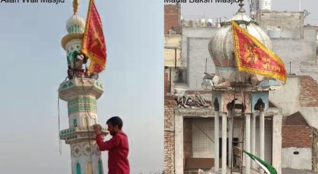 Viral Video Fact: Saffron Flag From Karawal Nagar Mosque Removed, Not Ashok Nagar Mosque